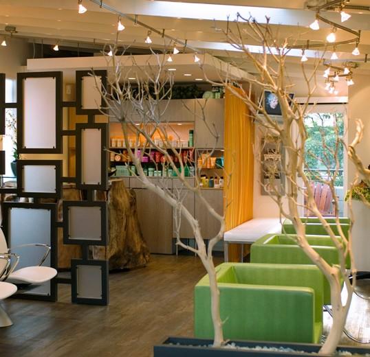 Salon interior design lisa mcdennon